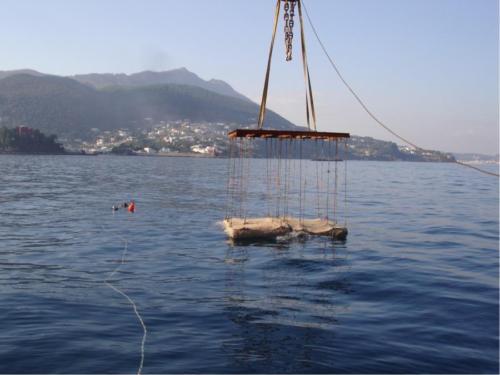 deep sea technology 10